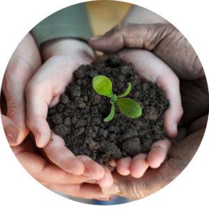 成都绿康有机肥厂家批发_关于我们的故事