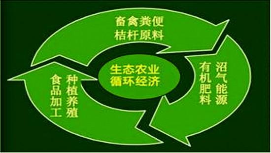 成都绿康有机肥_有机肥循环经济报告