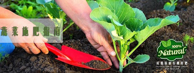 蔬菜科学施肥指南