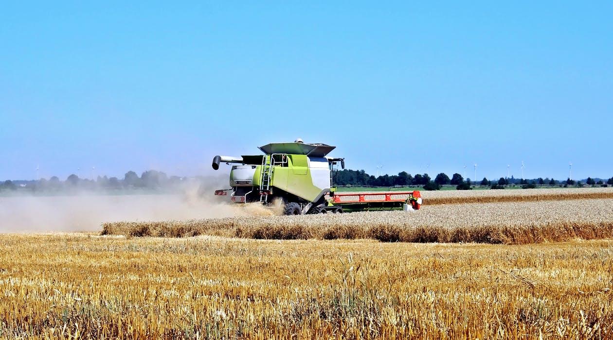 成都市绿康有机肥有限公司_有机肥农业应用