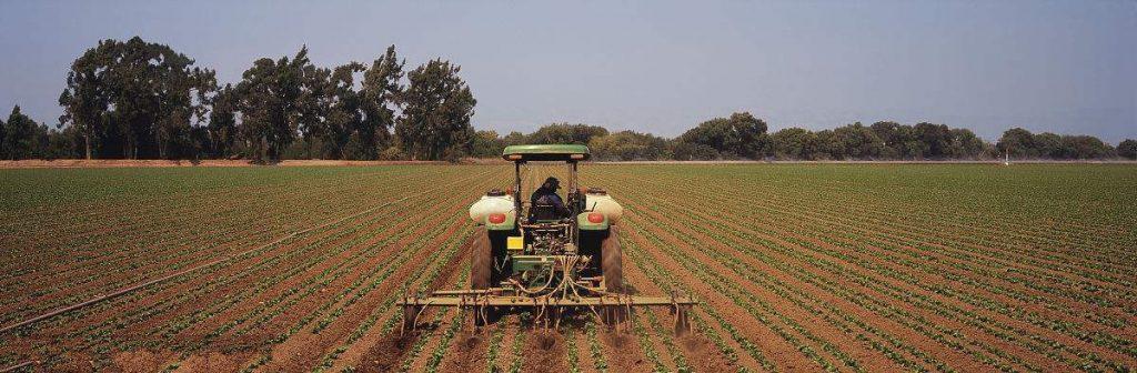 最佳的有机肥施肥方式是什么?如何高效而又科学的施肥?