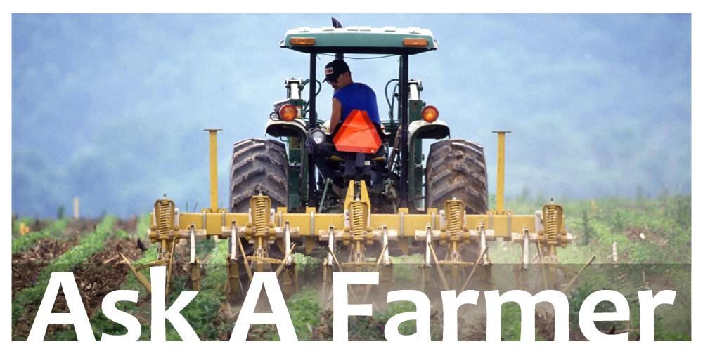成都绿康有机肥有限公司_作物轮替种植