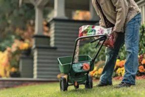 秋季草坪护理技巧