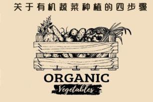 什么是有机蔬菜种植,关于有机蔬菜种植的四步骤。