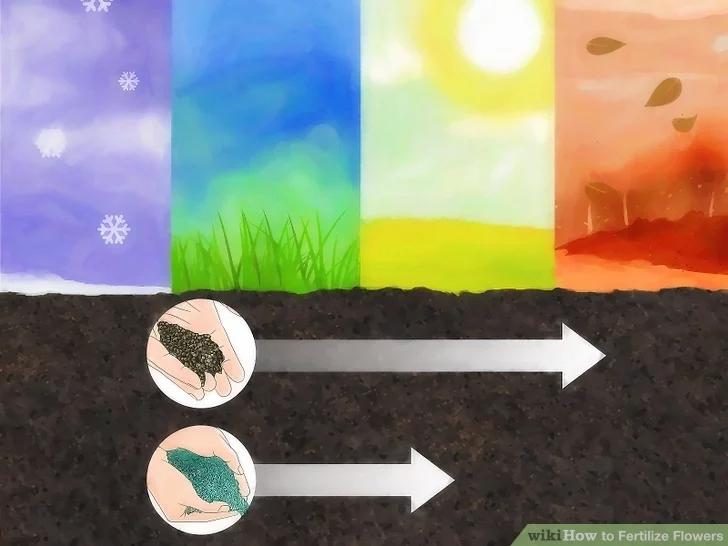 成都绿康有机肥有限公司_施肥时间_维基百科