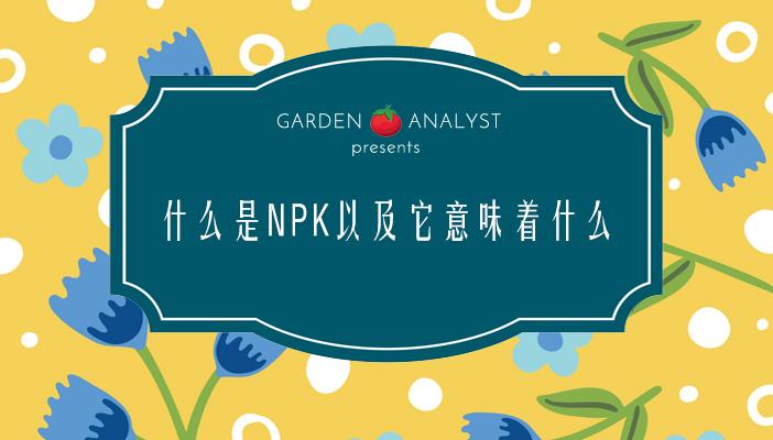 什么是NPK以及它意味着什么?