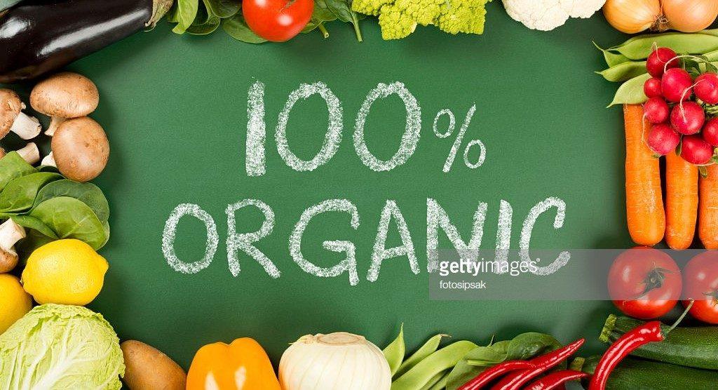 什么是有机蔬菜种植,关于有机蔬菜种植的四步骤