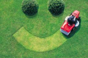 草坪护理 – 钾元素(K)对草坪作用