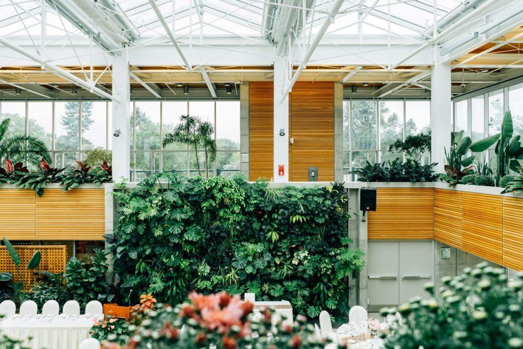 让室内变成户外感受最好的7种植物