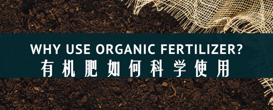 成都绿康有机肥有限公司_有机肥如何科学使用