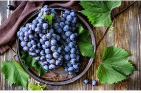 葡萄种植不好养护,请注意下列不能忽视的细节