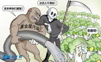 蔬菜有机肥_水果有机肥_花卉有机肥_蚯蚓粪有机肥_营养土有机肥