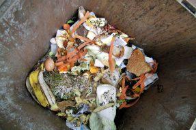 如何堆肥厨余垃圾,只要6步骤就可以解决