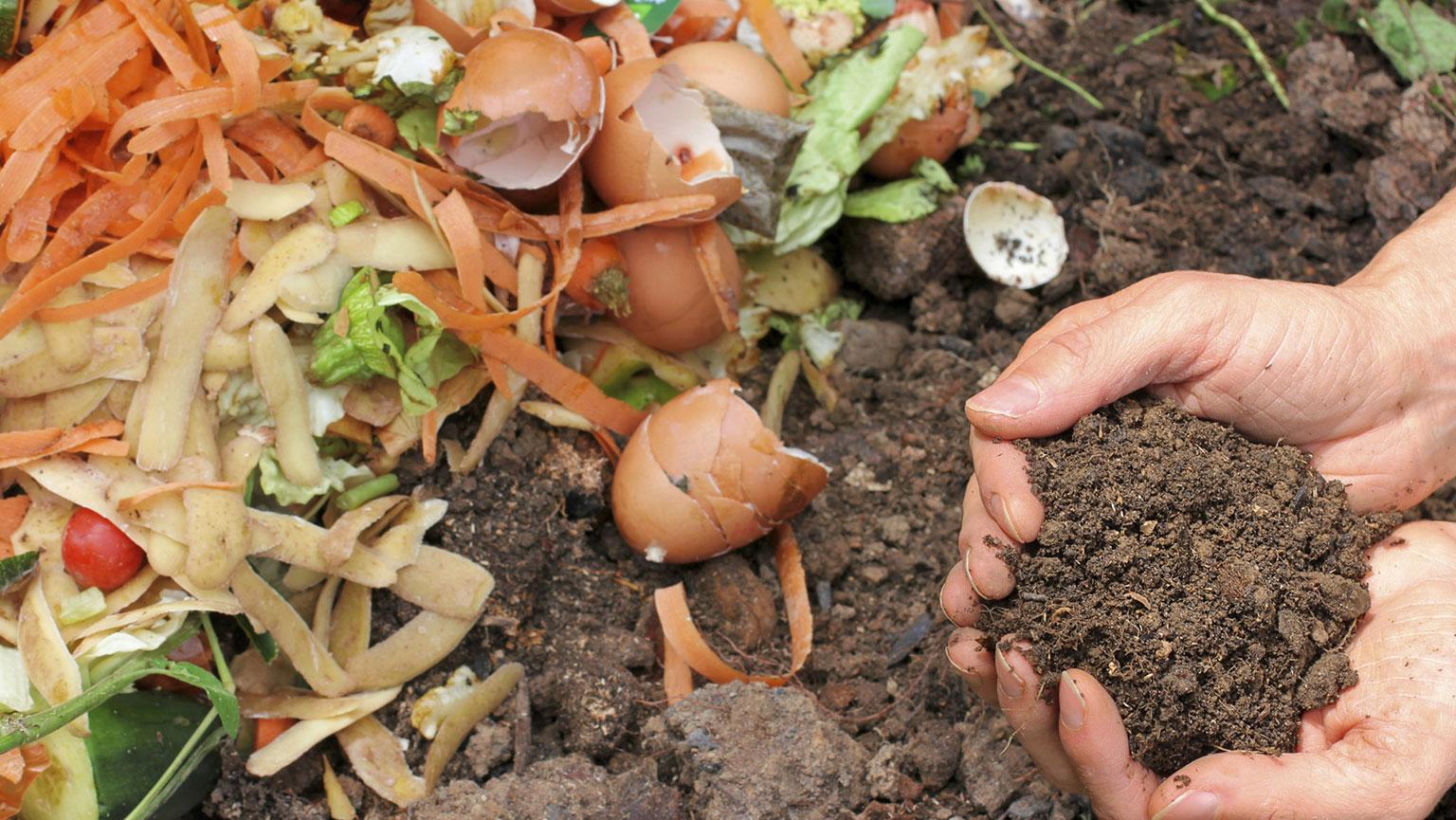 成都市绿康有机肥有限公司_厨余利用蚯蚓堆肥