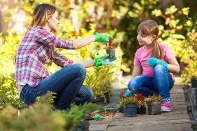 成为一个园艺爱好者,让你更爱上生活的乐趣