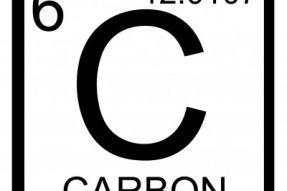 如何生产有机的产品,必须知道植物如何吸收碳元素