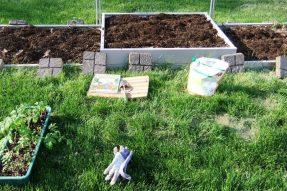 DIY教学|绿康有机肥教您如何制作栽培用营养土