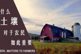为什么土壤对农民如此重要?