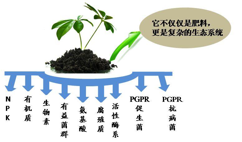 有机肥中的有益微生物超详解