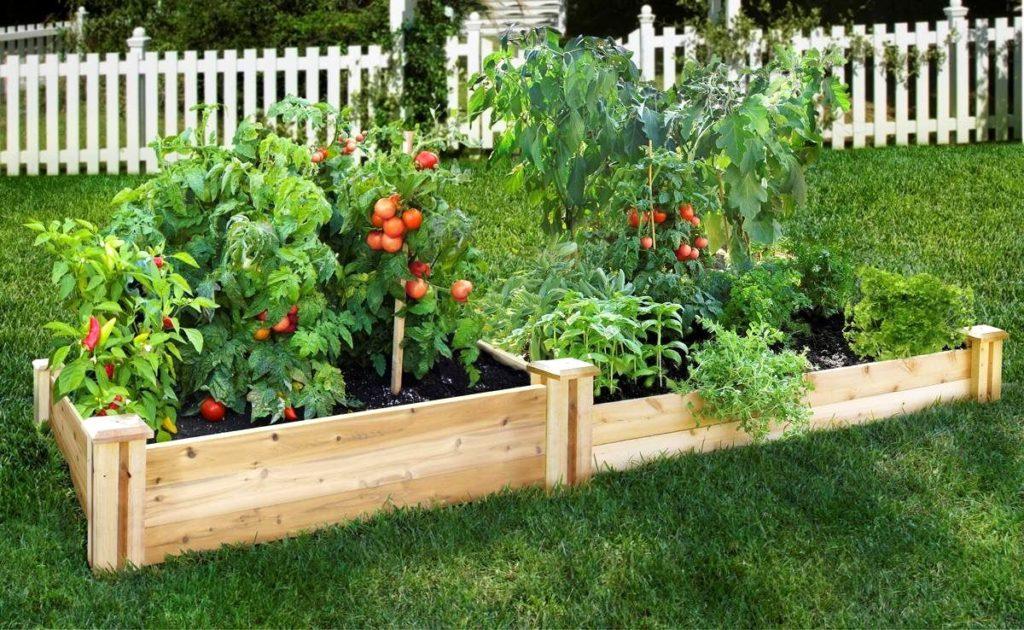 成都绿康有机肥_绿康有机肥_如何让土壤变得更好