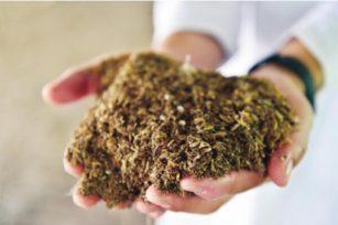 稻壳、麦秸等农业废弃物堆肥指南