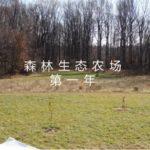 森林生态农场第一年