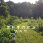 森林生态农场第五年