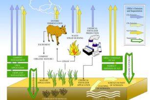实验证明:有机的耕作方式能逆转碳排放!