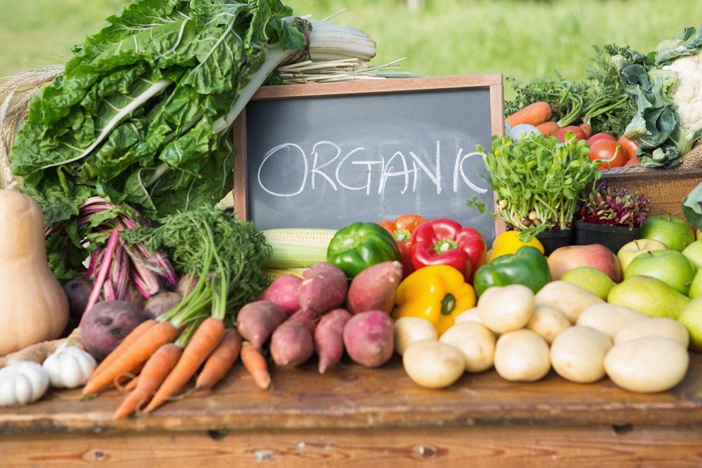 城市厨余堆肥及社区花园实践指南