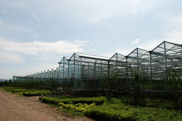 生态农业_新型现代化农业
