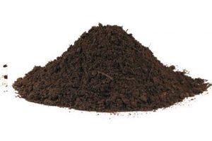 果树土壤_有机堆肥