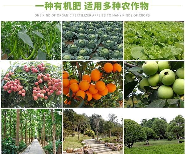 果树有机肥_果树专用肥料_成都果树有机肥批发_水果有机肥价格_果树有机肥厂家