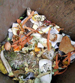 厨余垃圾变废为宝,自制有机肥教学