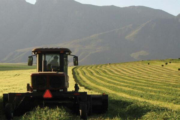 有机农业它是什么