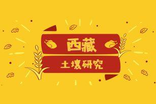 西藏地区土壤:微量元素(第五章)