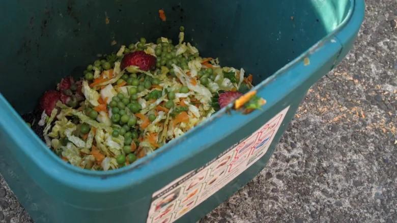 厨余垃圾去哪了,看看加拿大怎么做的