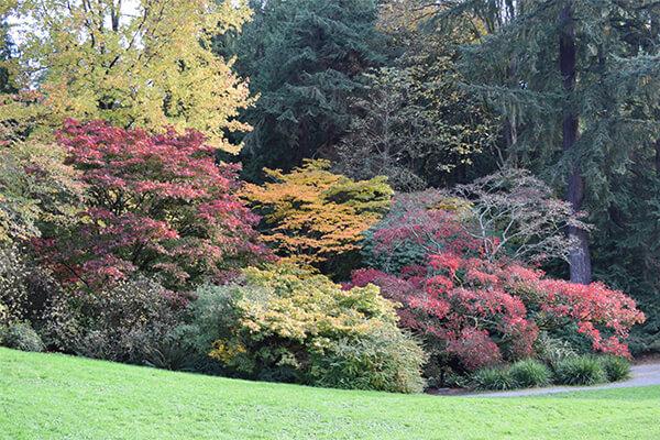 秋天土壤准备_绿康有机堆肥