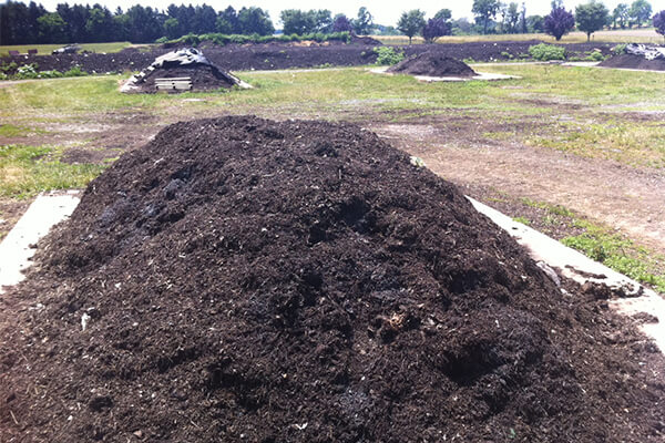 堆肥是什么