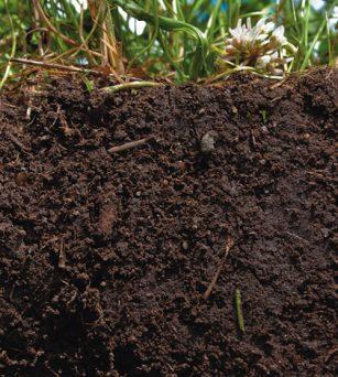 在美国有机肥堆肥能赚多少钱?