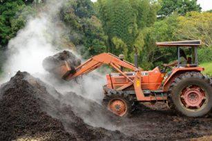 美国堆肥状况:它是什么、为什么、在哪里和如何堆肥