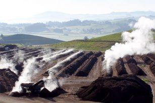 有机肥碳氮比研究分析