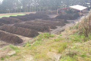 您有推荐的有机肥料是超级土壤配方吗?