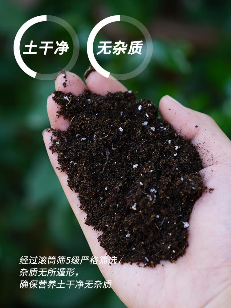 营养土批发_园艺栽培基质_园艺土壤_营养土价格