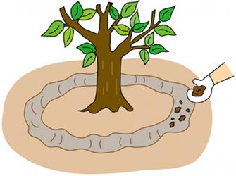 有机肥施肥方式_有机肥环状沟施肥