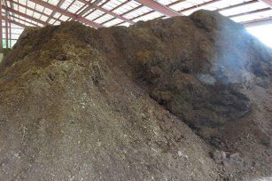 很多朋友询问,猪粪有机肥和鸡粪有机肥有什么区别?